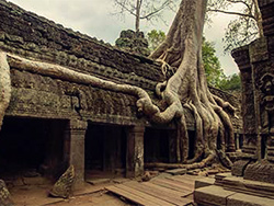 angkor wat without crowds