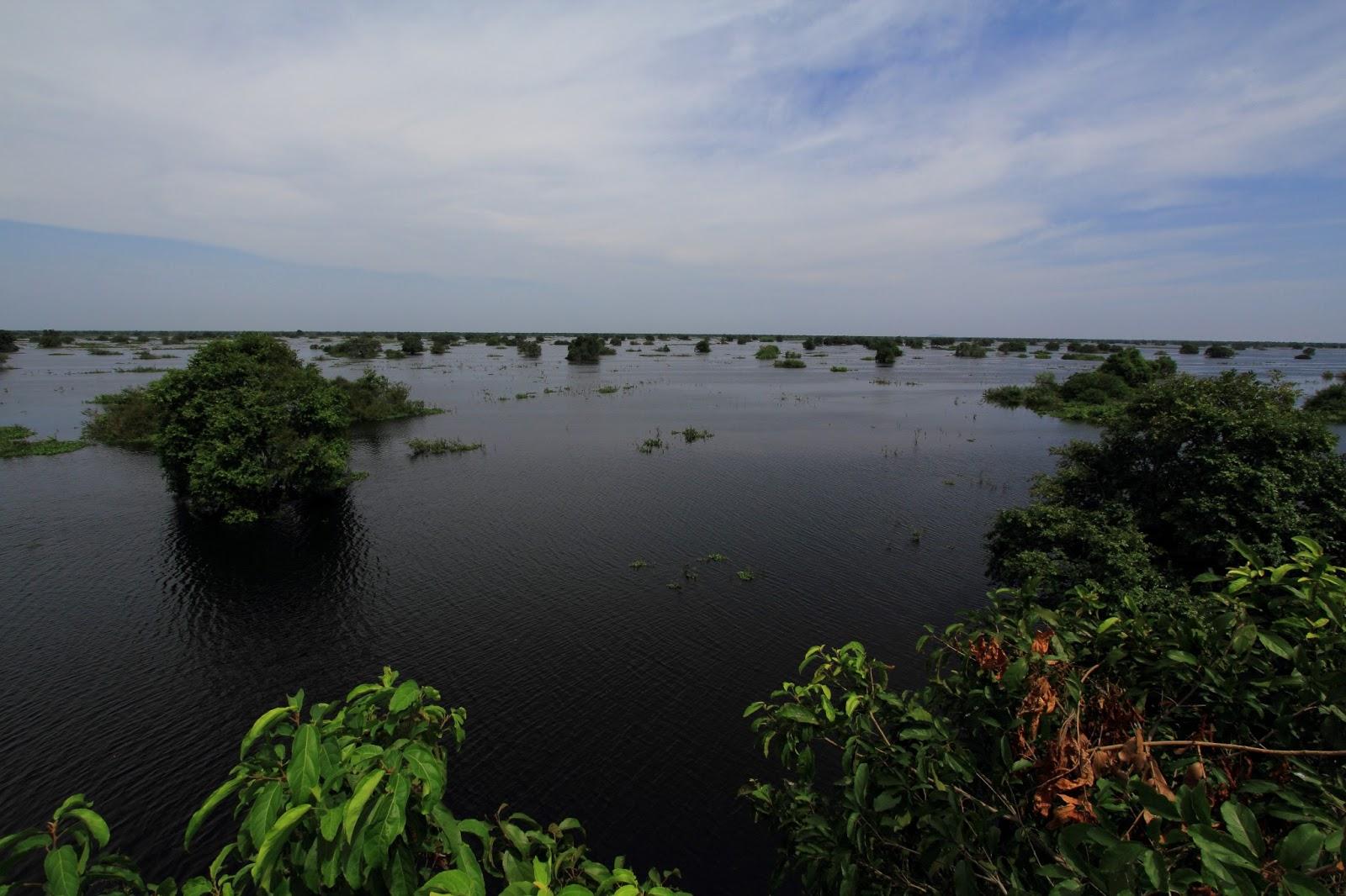 Prek Toal lake
