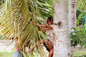 Palm swing