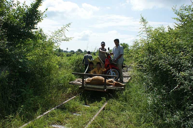 Bamboo train Activities