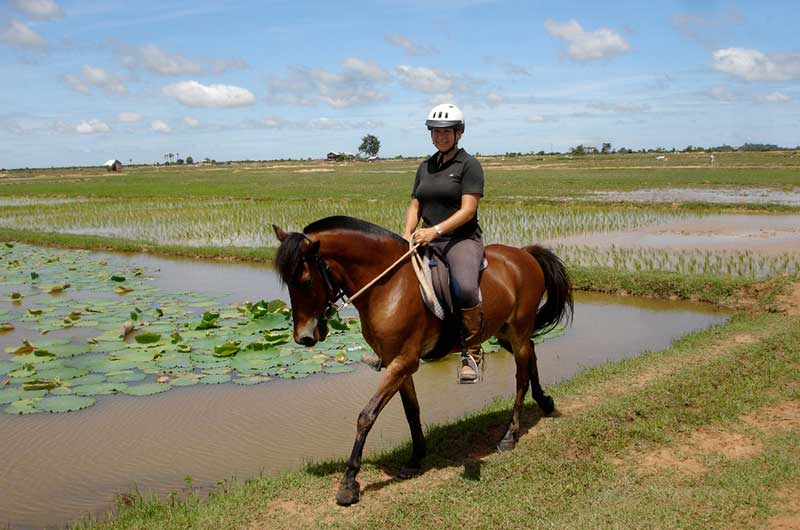 Siem Reap horse riding