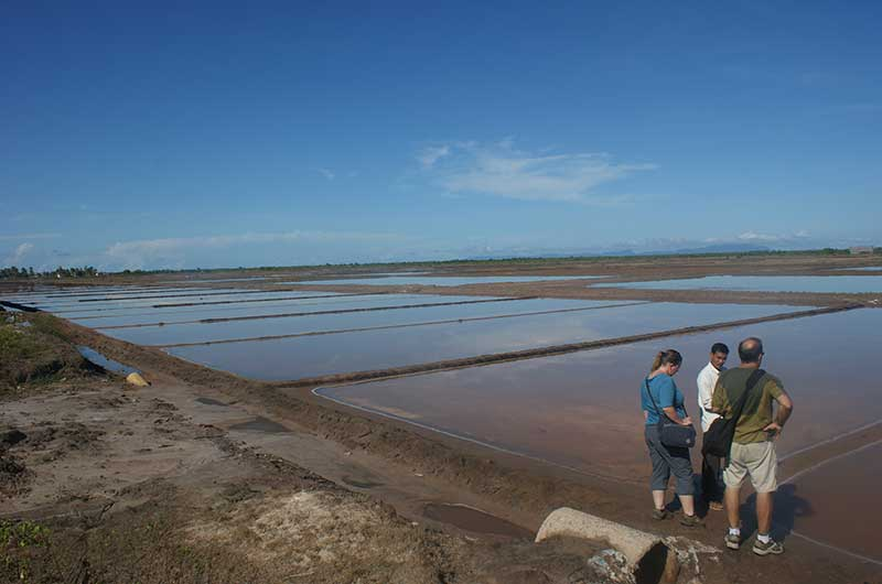Salt Fields In Kep