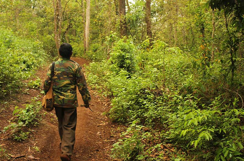 Trekking Seima Protect Forest