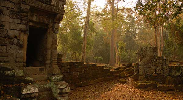 Angkor forest temple without crowds