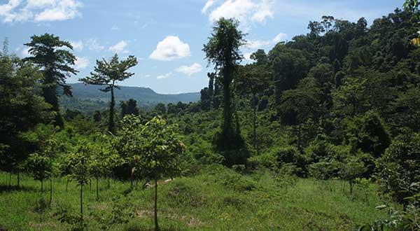 hike Kbal Spean