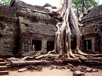 Angkor Temples Without Crowds