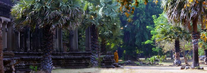 siem reap cambodge, angkor tourisme - angkor wat sans la foule