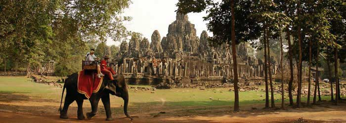elephant in front of Bayon temple, near angkor wat, siem reap