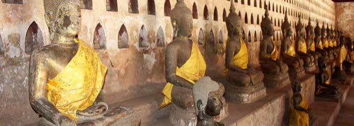 monks receiving alms in luang prabang, laos