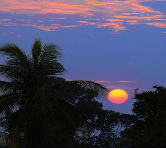 cambodia tour package - Moon over the palm trees