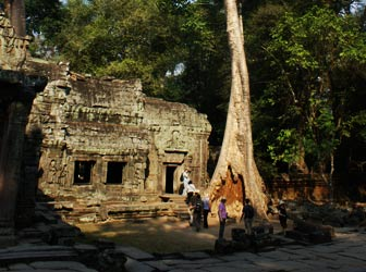 Siem Reap trip - ta prohm temple