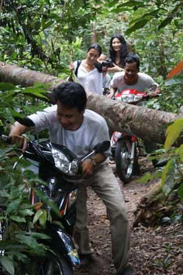 all-terrain-motos pic9