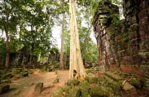 Angkor Wat ohne Besucherscharen-II
