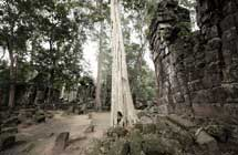 Angkor Wat ohne Besucherscharen-I