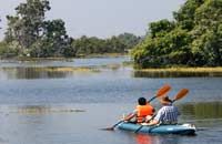 kayaking, tonle sap near siem reap